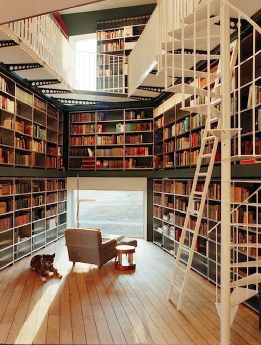 زیباترین و بهترین کتابخانه های شخصی که همه آرزو دارند